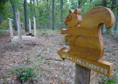 Das Eichhörnchen weist den Weg