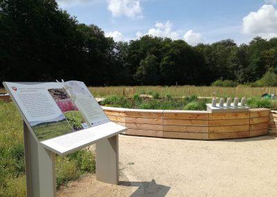 Moorbeet im Biotop-Erlebnis-Garten