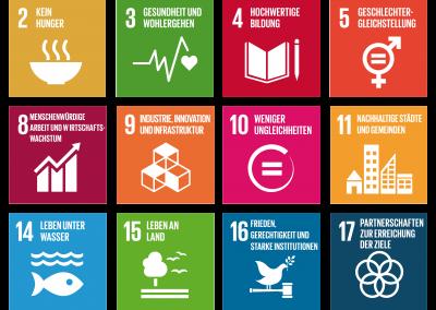 Die 17 globalen Nachhaltigkeitsziele