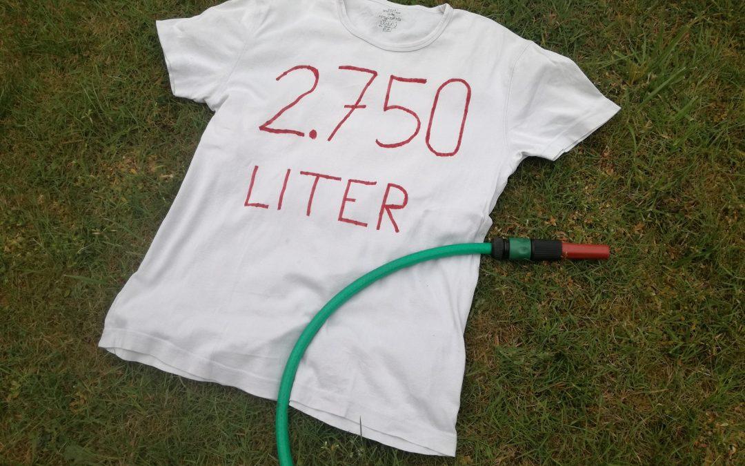 Wie viel Wasser kostet ein T-Shirt?