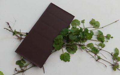 Gundermann in Schokolade
