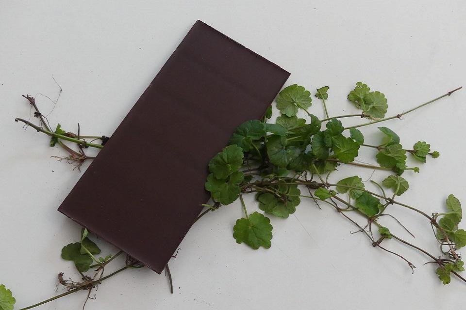 Gundermannstängel mit einer Tafel Schokolade