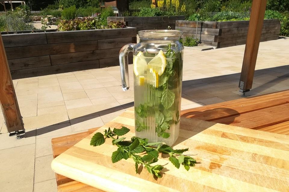 Karaffe mit Zitronen-Kräuter-Limo auf einem Gartentisch