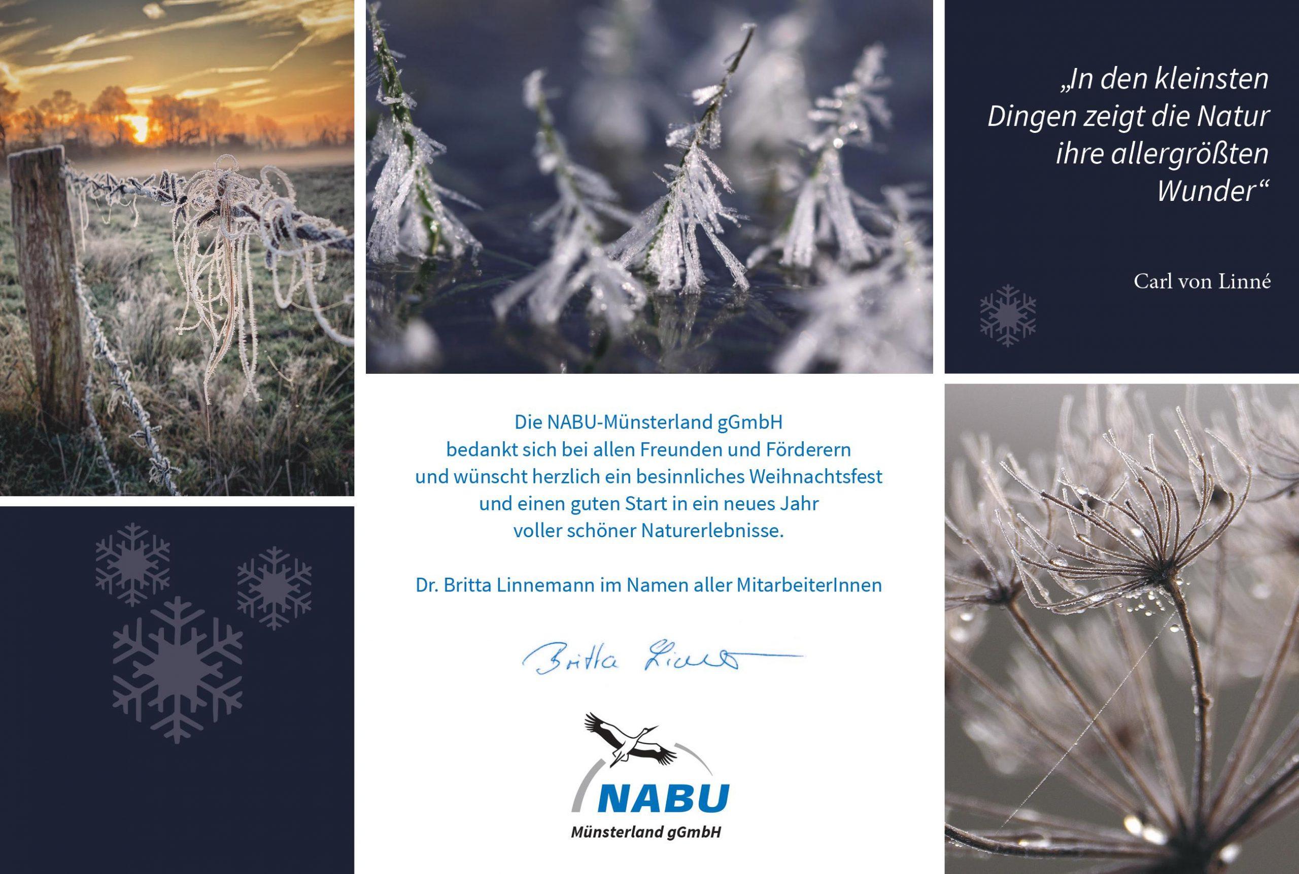 Weihnachtskarte mit Detailfotos aus der winterlichen Natur