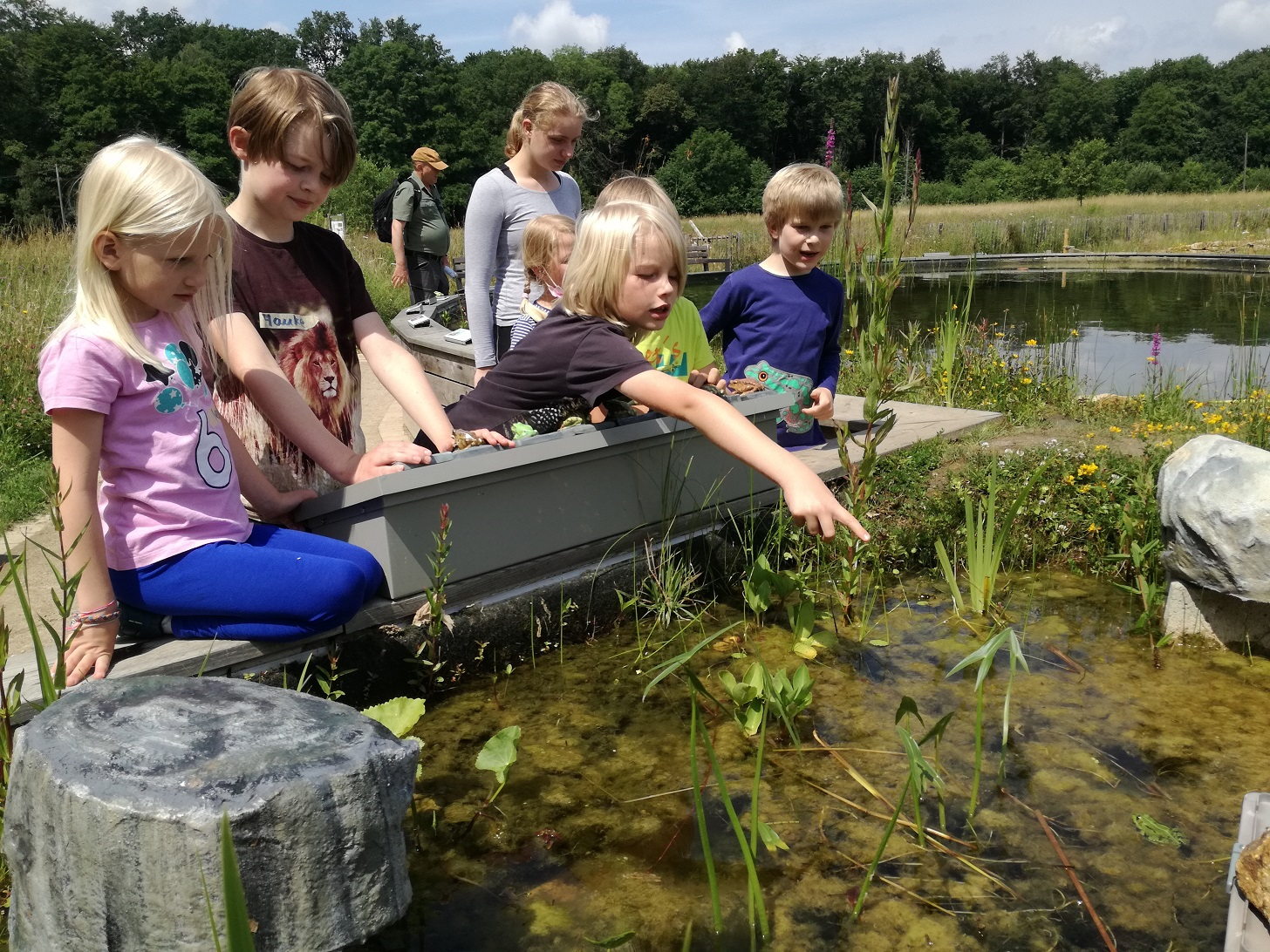 Kinder stehen uns sitzen an Hochteich und schauen ins Wasser, ein Junge zeigt auf einen Frosch