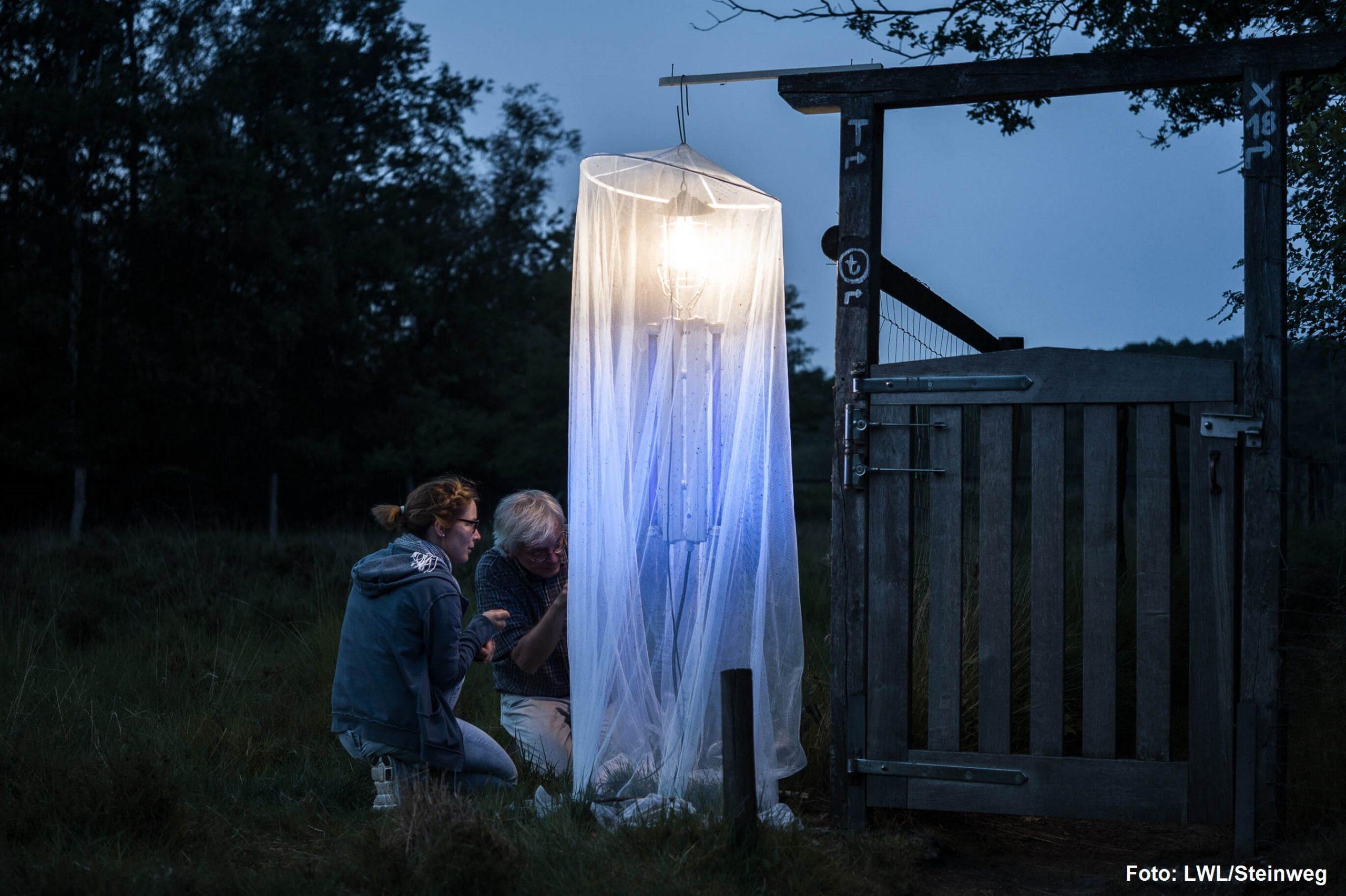 Zwei Menschen hocken draußen im Dunkeln neben einem weißen, beleuchteten Netz