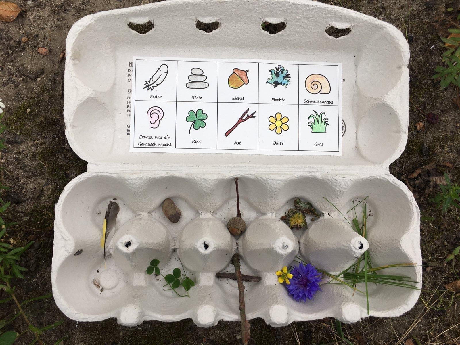 Eierkarton mit gesammelten Kleinigkeiten aus der Natur
