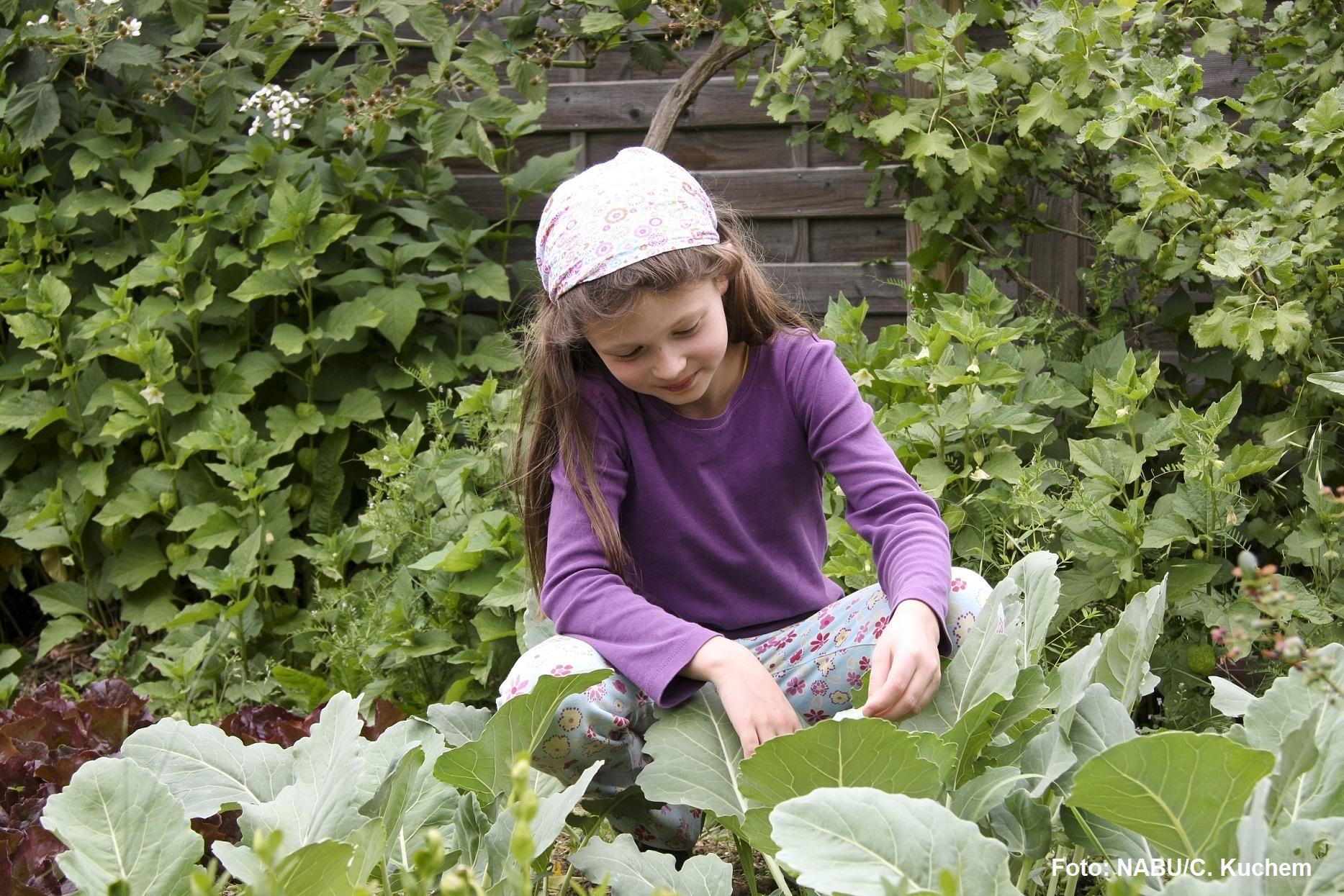Kind hockt im Gemüsegarten